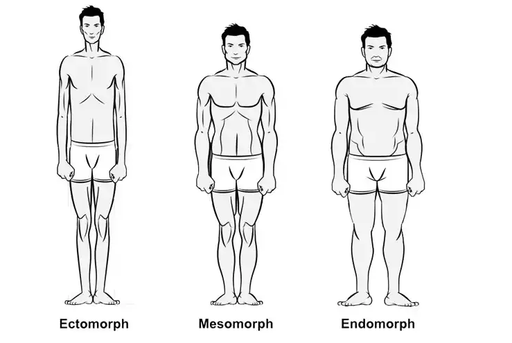 How To Make Gains As An Ectomorph by gymnasium post (GP) (gymnasiumpost.com)